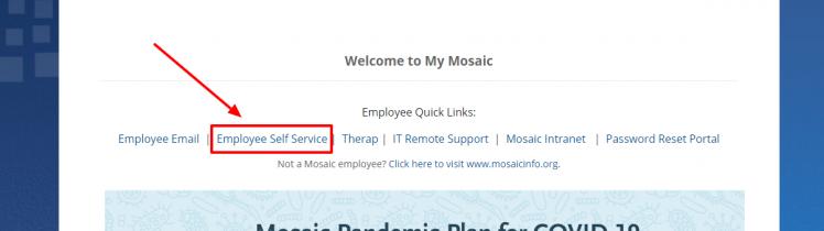 Mymosaicinfo login