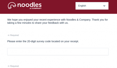 Noodles Survey